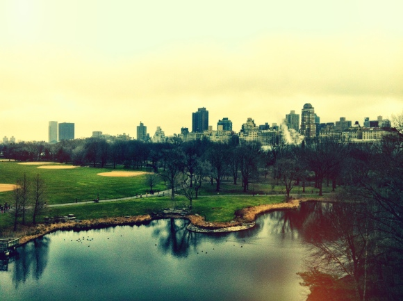 View from Central Park castle.